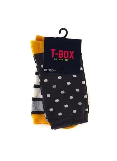 T-Box Soket Çorap Antrasit